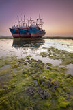 Three large abandoned ships in low tide Stock Photo