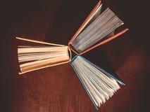 Three large art books Stock Image