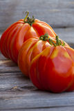 Three large Beefsteak Tomatoes in a Row Royalty Free Stock Photography