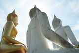 Three Large Buddha Stock Photography