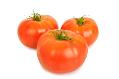 Three large fresh ripe tomato, healthy ingredient isolated on wh Royalty Free Stock Photo