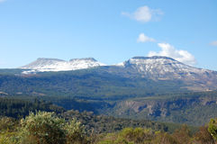 Three large hogs. Three Hogs Backs covered in snow, Hogsback, Eastern Cape, South Africa Stock Images
