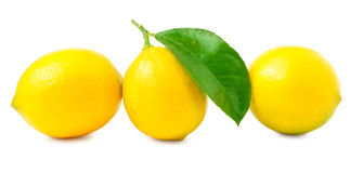 Three large, juicy, beautiful lemon on a white background Royalty Free Stock Photo