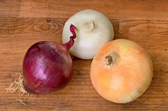 Three Large Onions Stock Photo