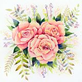 Original watercolor - three pink roses with leaves on a white background stock illustration