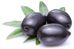 Three large ripe black olives. Stock Photo