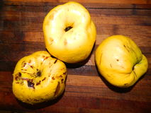 Three large yellow quince on a wooden board. Fruit Stock Photos