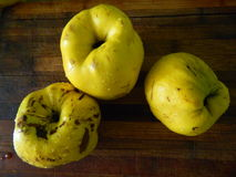 Three large yellow quince on a wooden board. Fruit Royalty Free Stock Images