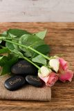 Three lava stones and three beautifull pink roses Stock Image