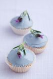 Three lavender cupcakes Royalty Free Stock Images