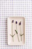 Three lavender flowers on square plate Royalty Free Stock Photos