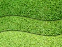 Three layer of green grass Stock Photos