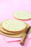 Three layers of Biscuit Sponge Cake Royalty Free Stock Photography