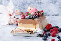 Three layers ice cream cake. Three layers vanilla, coffee and chocolate ice cream cake, served with frozen berries and macaroons biscuits on rectangular white royalty free stock images