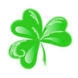Three Leaf Clover vector Royalty Free Stock Images