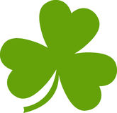 Three leaf clover Stock Image