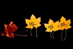 Three leaf lost a friend Stock Images