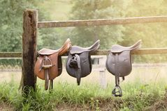Three leather saddles in a wooden fence Stock Photos