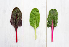 Three leaves of fresh swiss chard on a white table Royalty Free Stock Photo