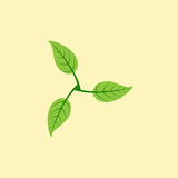 Three leaves logo Stock Photography