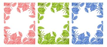 Leave blank in the middle for the text. Three leaves three colors are blue green and pink for card Royalty Free Stock Image
