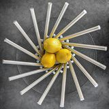 Three Lemon Fruits on Steel Bowl Stock Photo