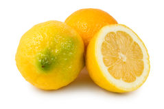 Three lemons Royalty Free Stock Photo