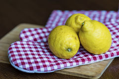 Three lemons  on checkered red dishtowel Royalty Free Stock Photography