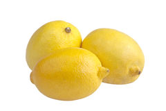 Three lemons. Closeup studio photo of  three lemons  nice and juicy with  isolated on white background Stock Photos