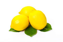 Three lemons and lemon leaves Royalty Free Stock Images