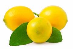 Three lemons on the white background isolated Stock Photos