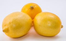 Three Lemons   on white background Stock Photos