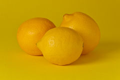 Three Lemons Stock Photo