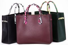 Fashionable women bag. Three lether fashionable women bags Royalty Free Stock Photography