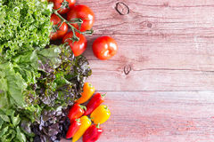 Three lettuce varieties with tomatoes and peppers Royalty Free Stock Photography