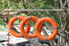 Three lifebuoys hang on branch beside waterfall. Three orange lifebuoys hang on branch beside waterfall Royalty Free Stock Photos