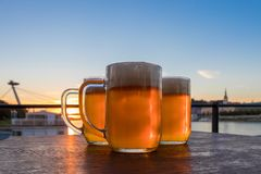 Three light beer glasses on the wooden table stock image