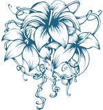 Three lilies Stock Photo