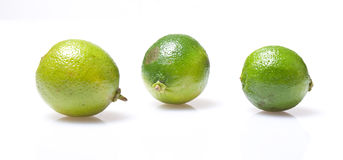 Three lime. On white background Royalty Free Stock Images