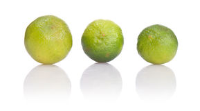 Three lime. On white background Royalty Free Stock Photos