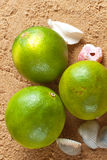 Three limes on the beach Royalty Free Stock Images