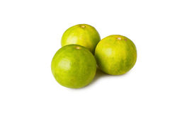 Three limes Stock Photography