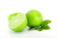 Three limes with leaves. Isolated on white Royalty Free Stock Photography