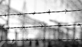 Three lines of barbed wire to demarcate the border during the wa Stock Photos