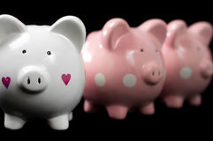 Three Litte Pigs. Three little piggy banks lined up. Unique white heart piggy in focus against black background. Concept: It's ok to be different Stock Images