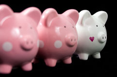 Three Litte Pigs. Three little piggy banks lined up. Unique white heart piggy in focus against black background. Concept: It's ok to be different Royalty Free Stock Image
