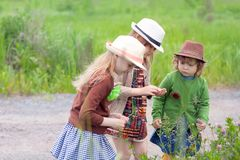 Three little adorable sisters girls exploring nature at the ranch together. Watching how plants grow, picking flowers. Wearing straw hats. Kids fashion stock photo