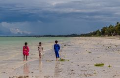Three little African girls along the ocean at sunny day royalty free stock photography