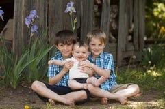 Three little boy brothers Stock Photos