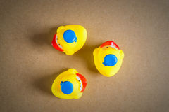 Three Little Duckling Rubber Duck Royalty Free Stock Images